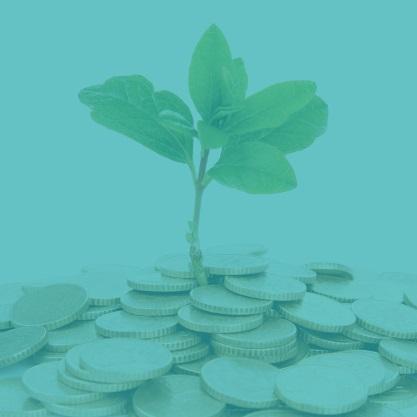 Përfitime, Ndihma, Grante Ekonomike